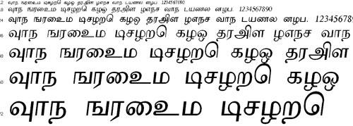 Akarathi Tamil Font
