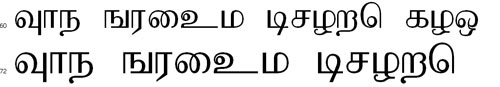 Baamini Tamil Font