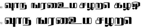 Bavani Bangla Font