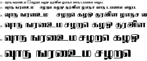 Bavani Tamil Font