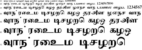 Cheithi Tamil Font
