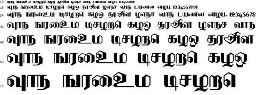 DenukaPC Tamil Font