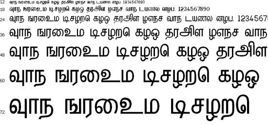 Hindolam Tamil Font