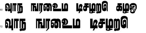 Karumpanai Tamil Font