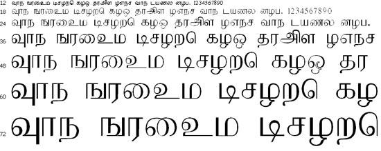 Pravi Tamil Font