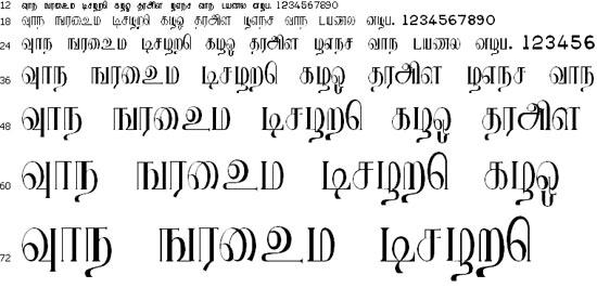 Ranjani Plain Tamil Font