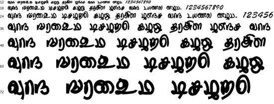 Thurikai Tamil Font