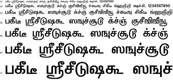 TBoomiS Font Download - Tamil Normal Font