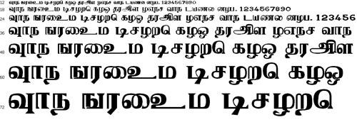 Tamil ACI Tamil Font
