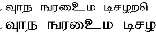 Sarukesi Tamil Font