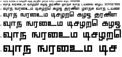 Anusha Tamil Font
