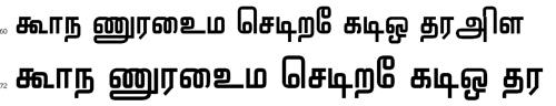Elocot Kanchi Tamil Font