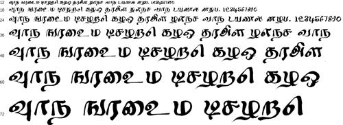 Kilavi Tamil Font