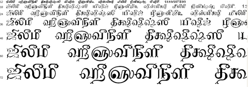 Tam Shakti 12 Tamil Font