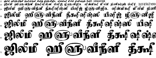 Tam Shakti 24 Tamil Font
