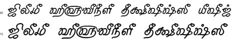 Tam Shakti 25 Bangla Font