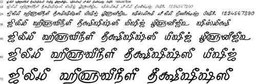 Tam Shakti 25 Tamil Font