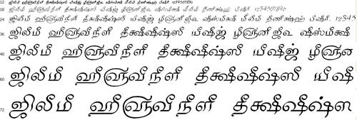 Tam Shakti 32 Tamil Font