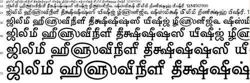 Tam Nambi Tamil Font