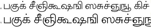 Akruti TML1 Tamil Font