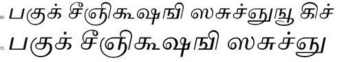 Akruti TML2 Tamil Font