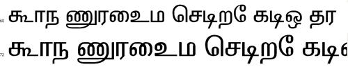 Elcot ANSI Tamil Font