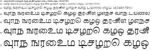 Ravi-D Tamil Font