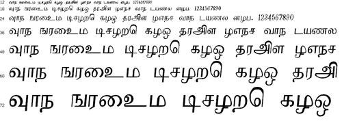 Renuka Tamil Font