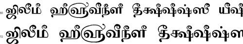 Tam Shakti 28 Tamil Font