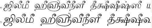 Tam Shakti 30 Bangla Font