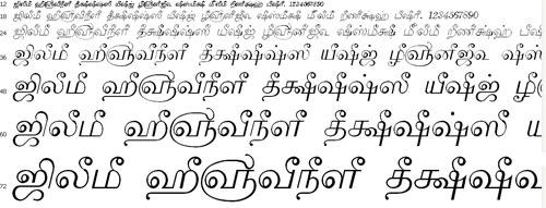 Tam Shakti 30 Tamil Font