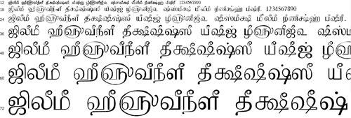 Tam Shakti 38 Font Download - Tamil Normal Font