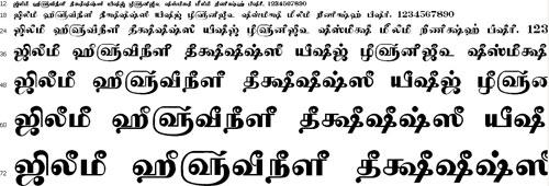 Tam Shakti 39 Tamil Font