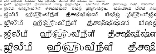 Tam Shakti 40 Tamil Font