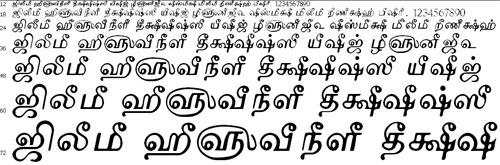 TAMu Maduram Tamil Font