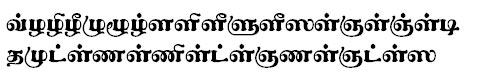 TAU_Elango_Guntalakesi Tamil Font