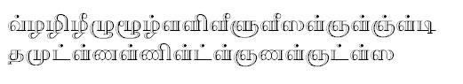 TAU_Elango_Pavalam Tamil Font